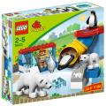5633 - Polar Zoo